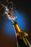 Celebrating - Winner - Luxury Stock Photo