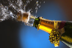 Celebrating - Winner - Wedding Royalty Free Stock Image