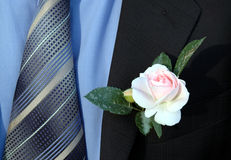 Celebration. A rose in the suit pocket Stock Photos