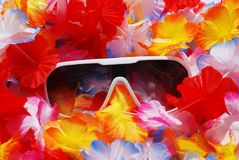 Celebration Background With Lei and Sunglasses Royalty Free Stock Photos