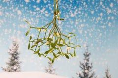 Celebration backgroungd. Christmas and New Year celebration card stock images