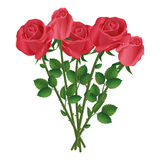Celebration bouquet of red roses. Celebration beautiful romantic bouquet of five red roses, isolated on white background. Vector illustration Royalty Free Stock Image