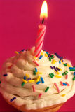 Celebration cupcake. A birthday cupcake with bright pink background royalty free stock images