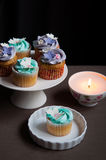 Celebration cupcakes on stand with candle Royalty Free Stock Photos