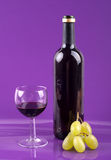 Celebration day. Red wine in glass and bottle and white grapes Royalty Free Stock Photo