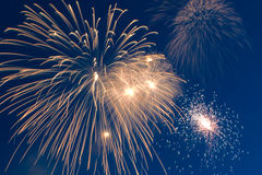 Celebration firework Stock Image