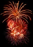 Celebration firework. Present firework on black background Stock Photo