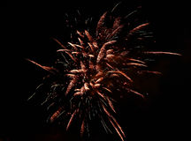 Celebration firework in the black night sky Royalty Free Stock Photos