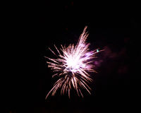 Celebration firework in the black night sky Royalty Free Stock Photo