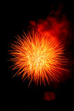 Celebration Fireworks. Royalty Free Stock Photos
