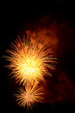Celebration Fireworks. Royalty Free Stock Photo