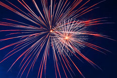 Celebration fireworks Royalty Free Stock Image