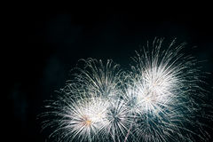 Celebration fireworks. Royalty Free Stock Images