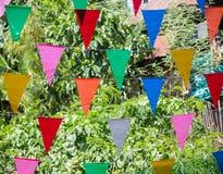 Celebration flag Royalty Free Stock Photo