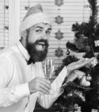 Celebration and New Year concept. Guy near Christmas tree. On wooden wall background. Man with beard holds champagne glass and shows tree toy. Santa Claus in stock photo