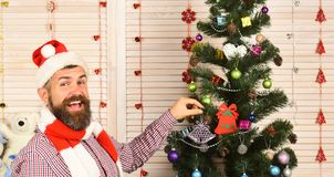 Celebration and New Year decor concept. Man with beard. Holds purple tree decoration. Guy in hat and scarf stands by fir tree. Santa Claus with cheerful face on royalty free stock image