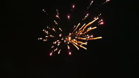 Celebration new years eve with firework on the night sky.  stock footage