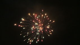 Celebration new years eve with firework on the night sky.  stock video