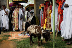 Celebration in orthodox ethiopian christian church. Royalty Free Stock Photo