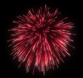 Celebration: red festive fireworks. At night over black background Royalty Free Stock Photo