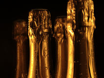 Celebration theme. Champagne. Champagne bottles ready for party Stock Photos