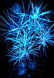 Celebratory bright firework Royalty Free Stock Photography