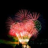 Celebratory bright firework Stock Image