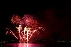 Celebratory firework royalty free stock photography