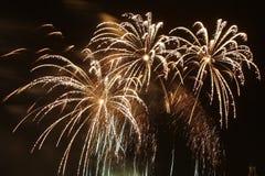 Celebratory fireworks Stock Photography