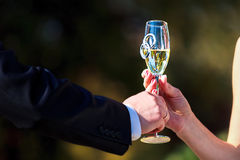 Celebratory glass of champagne in hand of bride Royalty Free Stock Photos