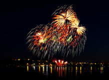 Celebratory night firework Royalty Free Stock Image