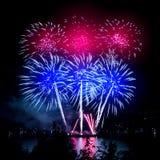 Celebratory vibrant firework Royalty Free Stock Photo