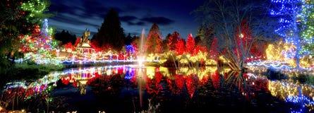 Celebrazione degli indicatori luminosi di Natale Fotografia Stock Libera da Diritti