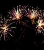 Celebrazione dei fuochi d'artificio durante la festa dell'indipendenza luglio dello stadio avanti Fotografia Stock