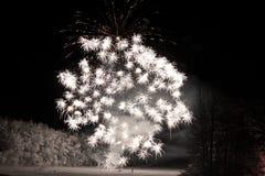 Celebrazione del fuoco d'artificio Immagini Stock Libere da Diritti