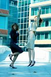 Celebrazione della tinta dell'azzurro delle donne di affari Fotografia Stock Libera da Diritti