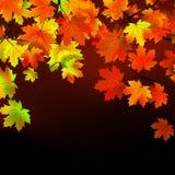 Celebrazione di giorno di ringraziamento. ENV 8 Fotografia Stock