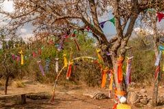 Celebrazione di hippy Fotografia Stock