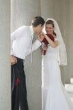 Celebrazione di matrimonio Fotografia Stock Libera da Diritti