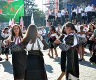 Celebrazione ricamo e del borscht_33 Immagini Stock