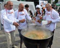Celebrazione ricamo e del borscht_17 Immagini Stock Libere da Diritti