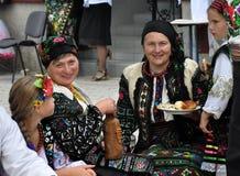 Celebrazione ricamo e del borscht_34 Immagine Stock