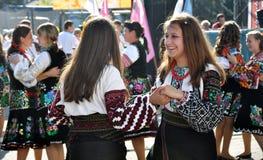 Celebrazione ricamo e del borscht_28 Fotografia Stock Libera da Diritti