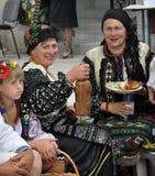 Celebrazione ricamo e del borscht_35 Immagine Stock Libera da Diritti
