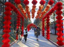 Celebrazioni cinesi del nuovo anno, l'anno della scimmia Fotografia Stock