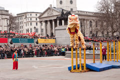 Celebrazioni cinesi di nuovo anno. Immagini Stock Libere da Diritti