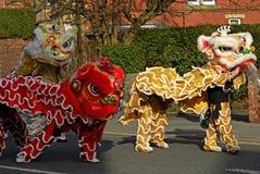 Celebrazioni di Lion Dancing Chinese New Year in Blackburn Inghilterra fotografia stock libera da diritti