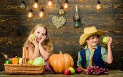 Celebre el festival de la cosecha Niños que presentan a cosecha el fondo de madera vegetal Verduras frescas del muchacho de la mu foto de archivo