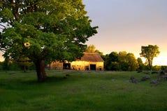 Celeiro abandonado país de origem com por do sol e a grande árvore imagem de stock