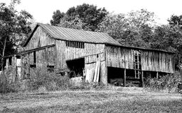 Celeiro aberto preto e branco Foto de Stock Royalty Free